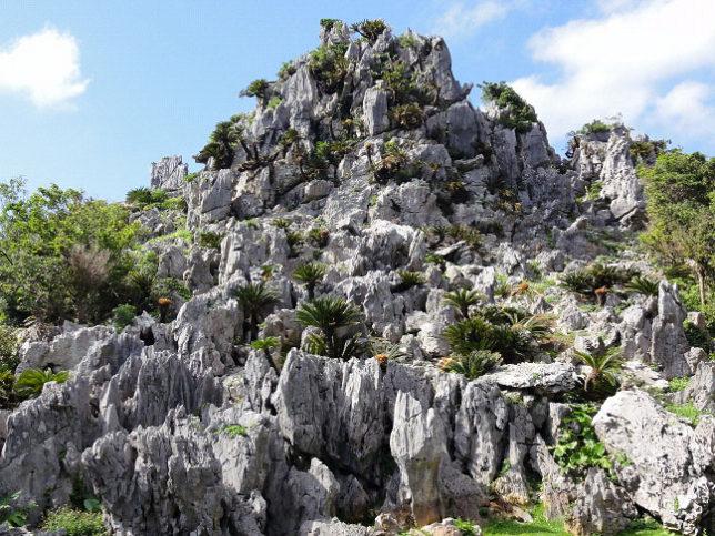 沖縄 やんばる 大石林山