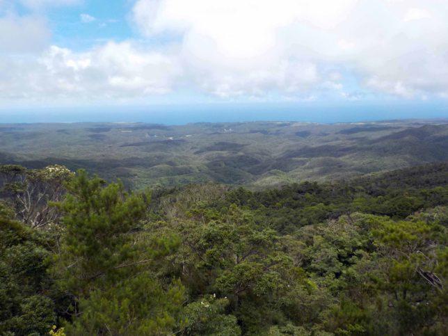 沖縄 やんばる トレッキング 絶景