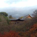 【京都を半日で巡る旅】あの日の中学生は東福寺を忘れない